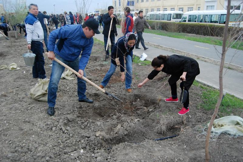 На городском субботнике в Атырау высадили 18 тыс деревьев и кустарников
