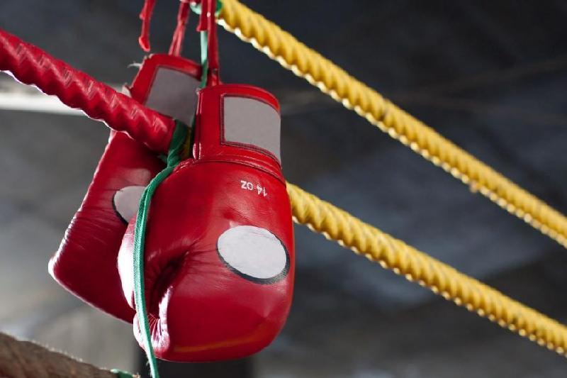 Қаңтарда кәсіпқой боксшылардан кімдер жұдырықтасады