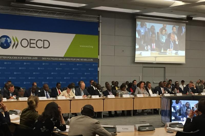 OECD Paris meeting: Deputy Agriculture Minister tells about financing agribusiness in Kazakhstan