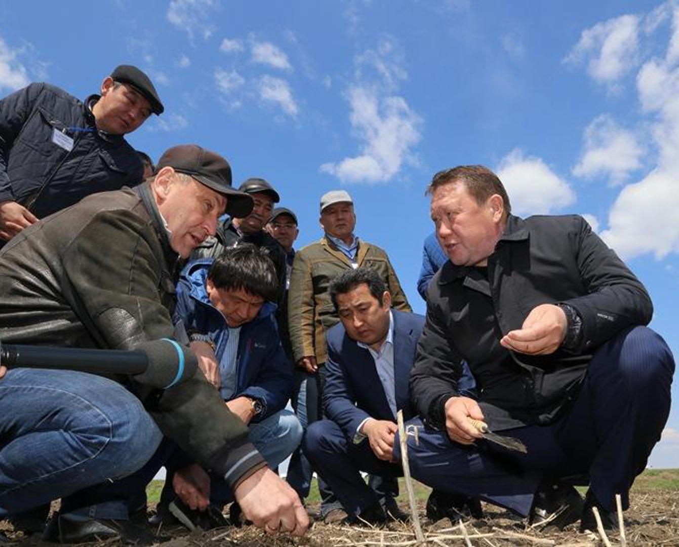 Крупнейший мясокомбинат в Центральной Азии запустят в Северном Казахстане