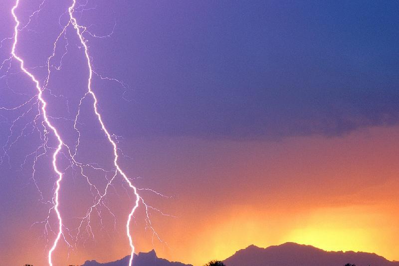 Молния убила пастуха в Жамбылской области