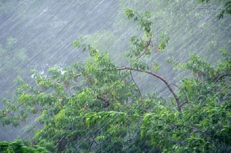Ураганный ветер сорвал кровли зданий в Акмолинской области, пострадала женщина