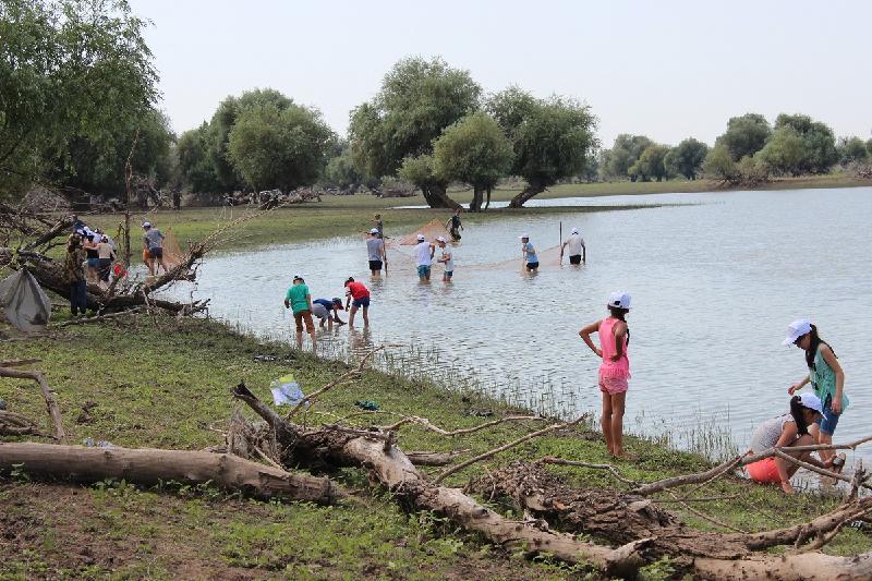 10 тыс мальков разных рыб спасли волонтеры в Атырау