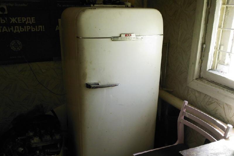 Семилетний ребенок задохнулся в холодильнике в Семее
