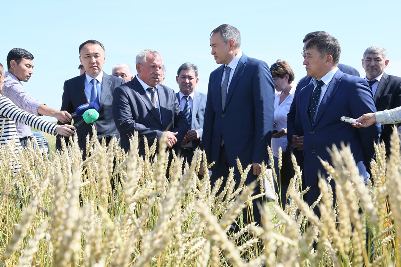 Agriculture Minister visits Kostanay region