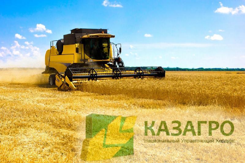 Какие страны инвестируют в сельское хозяйство Казахстана, рассказали в КазАгро