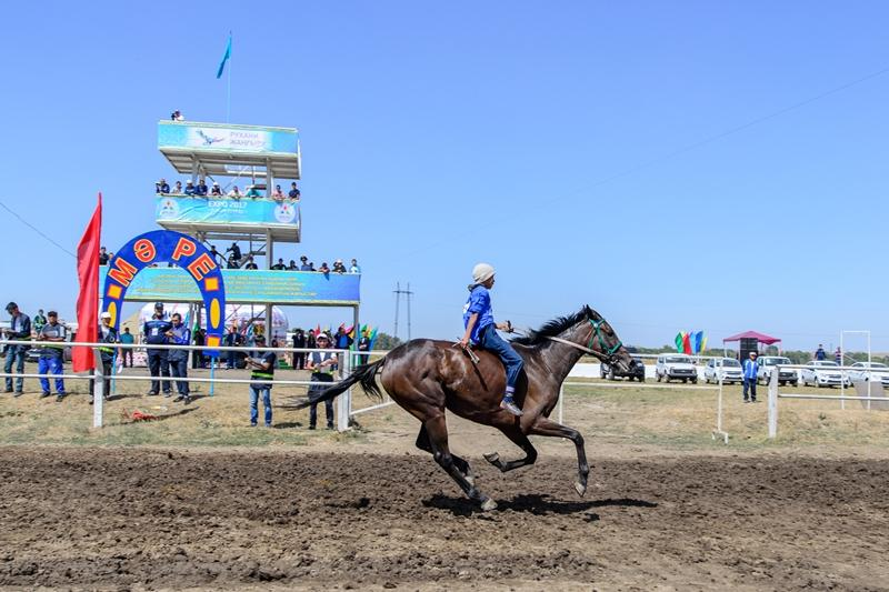Almaty region hosts President's Cup equestrian competitions