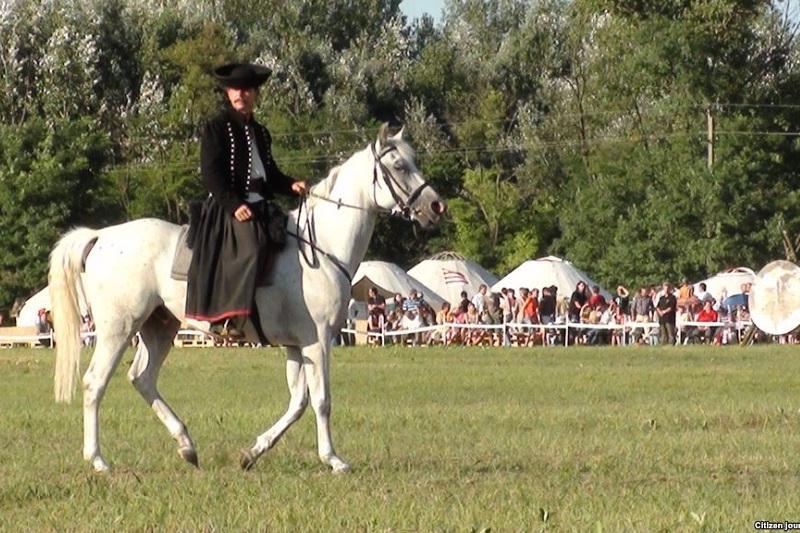 Этноуголок Великой Степи представлен на фестивале культуры венгерских кыпчаков