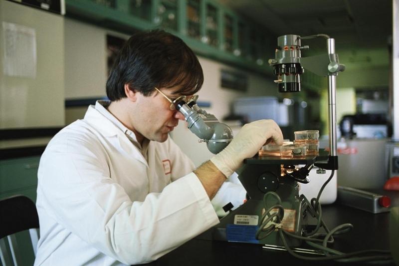 Международный центр для молодых ученых предложил создать Президент Узбекистана