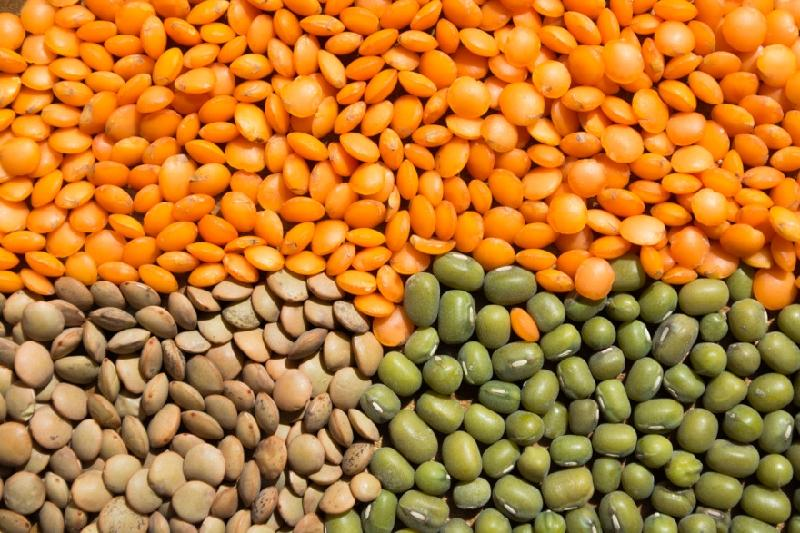 Kazakhstan intends to become world's fourth largest lentils exporter