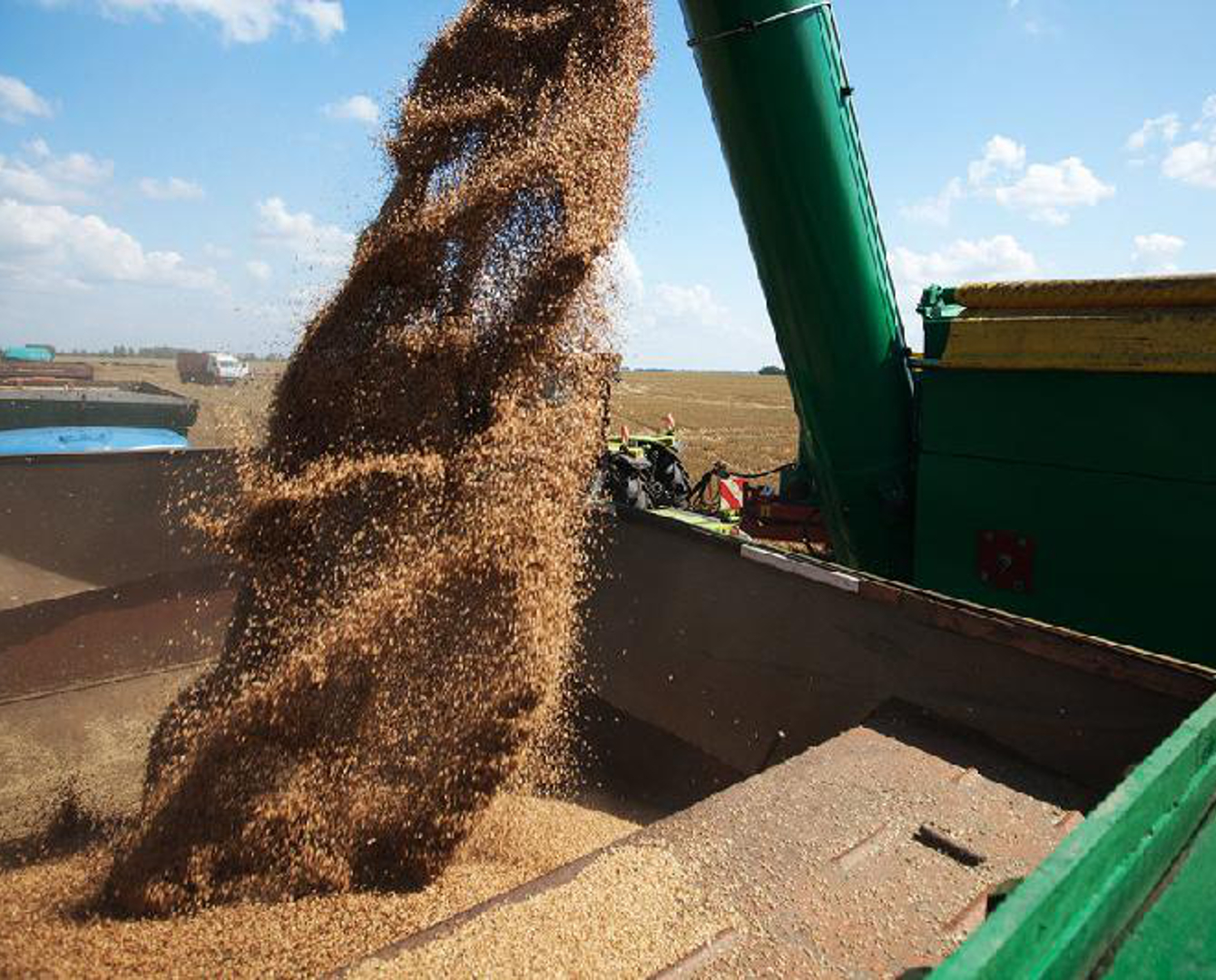 Казахстан возобновит поставки зерна в Норвегию