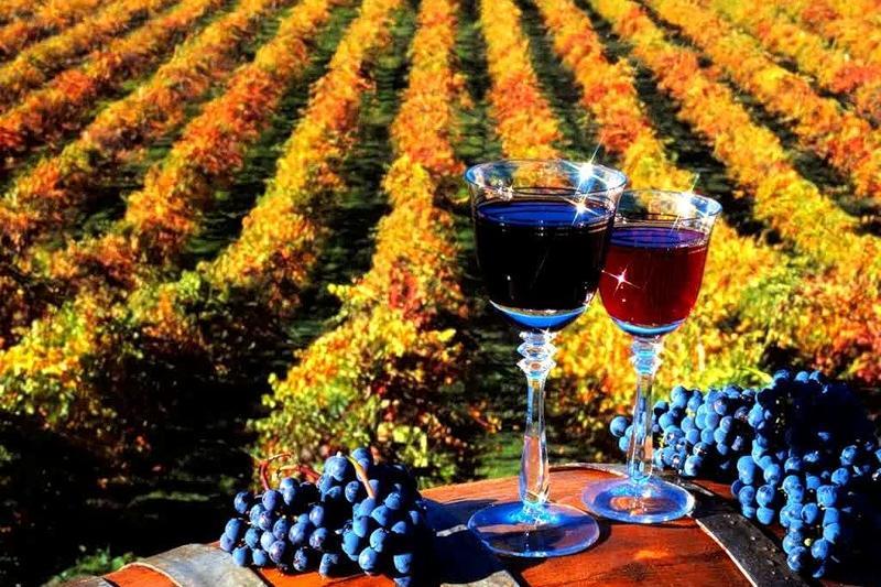 Мировой столицей туризма в области виноделия станет Молдова