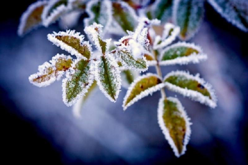Colder weather to hit Zhambyl region on Oct 6-9