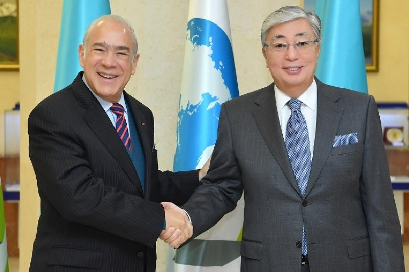 Kazakhstan sets great store by cooperation with OECD - Tokayev