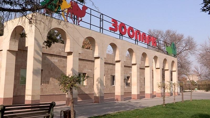 Билет в зоопарк подорожал в Шымкенте