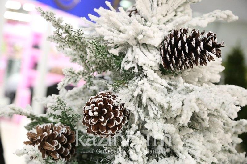 Новогодние ели продают в Астане за 1,5 миллиона тенге
