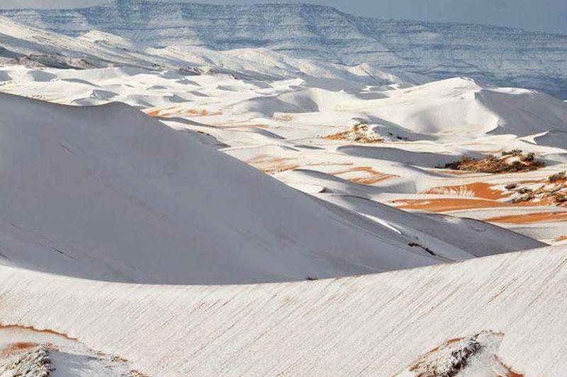 寒流来袭 撒哈拉沙漠现罕见落雪奇景