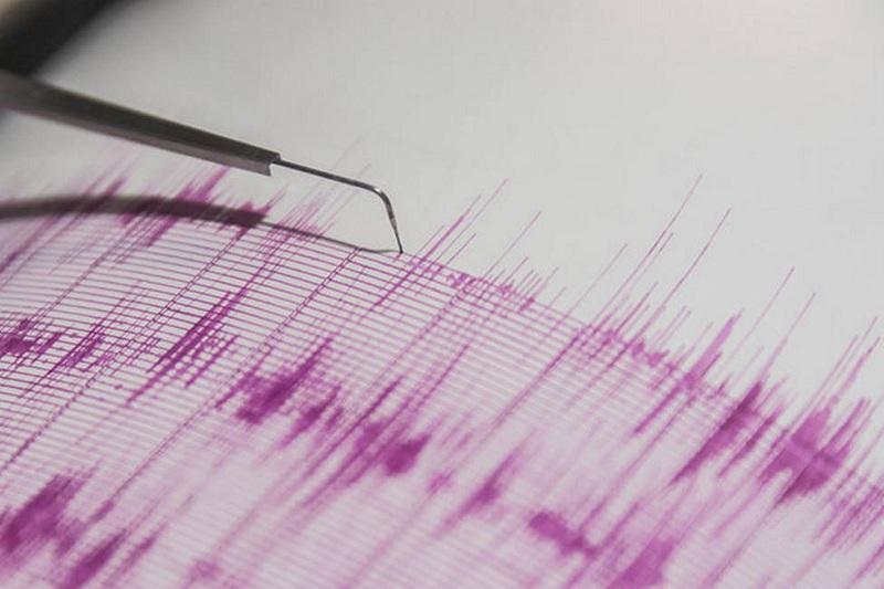 В Шымкенте произошло землетрясение