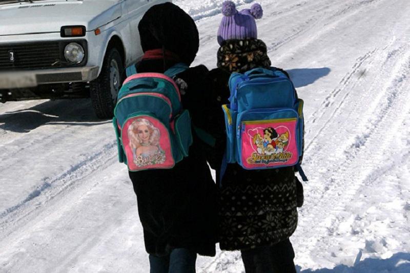 Отменены занятия школьников в Акмолинской области 23 января