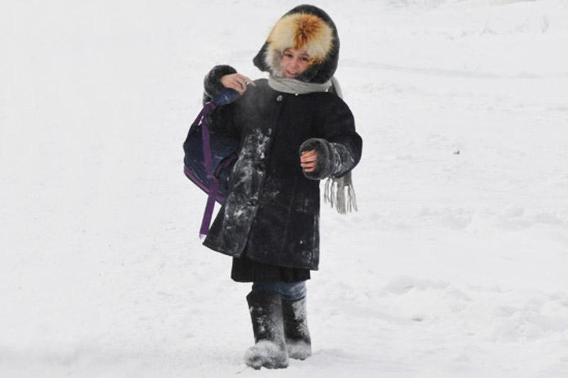 Отменены занятия для учащихся школ в Акмолинской области 24 января