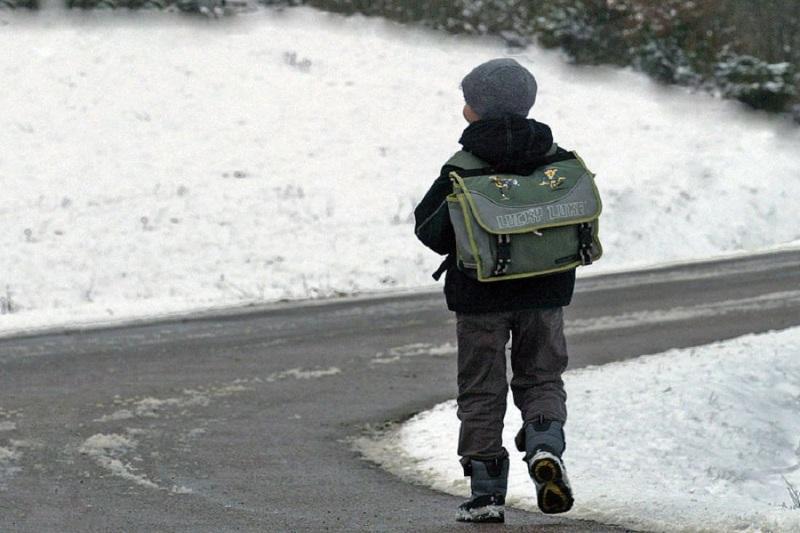 Для школьников и студентов колледжей отменены занятия в Акмолинской области