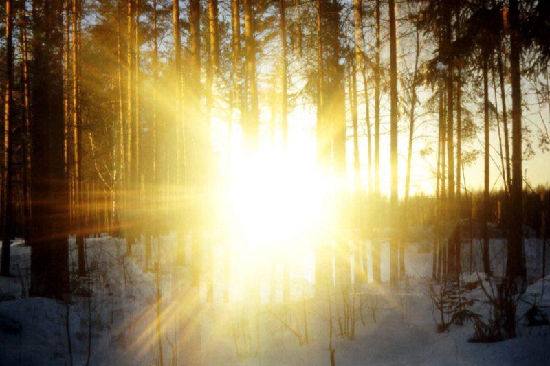 Тепло придет в Шымкент в начале февраля