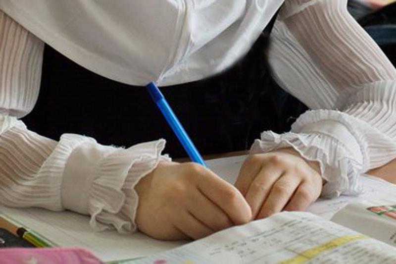 Живущая без документов 12-летняя девочка впервые пошла в школу в Шымкенте