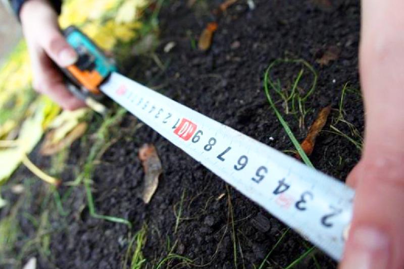 Земли стоимостью свыше 3 млрд тенге использовали не по назначению в СКО