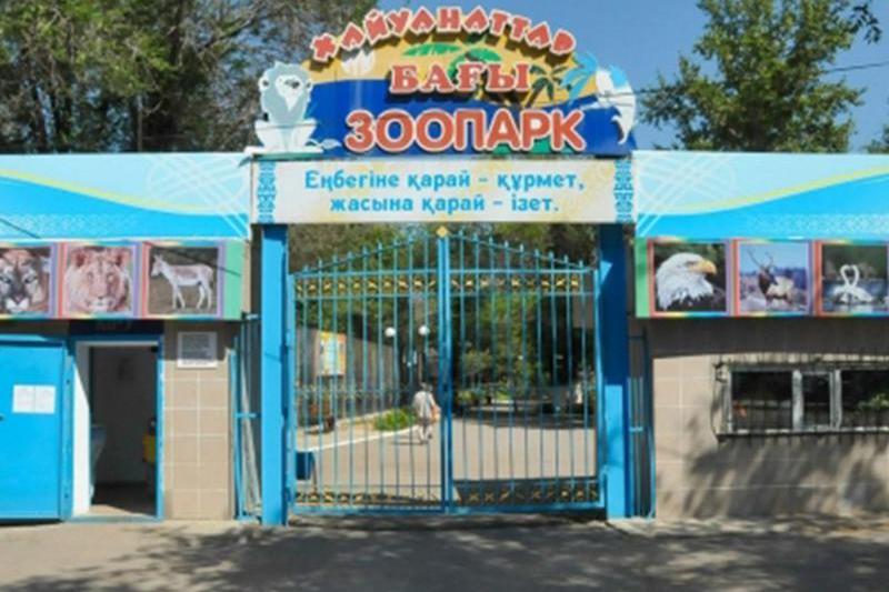 Директор зоопарка Караганды не доказала факт оскорблений в соцсетях