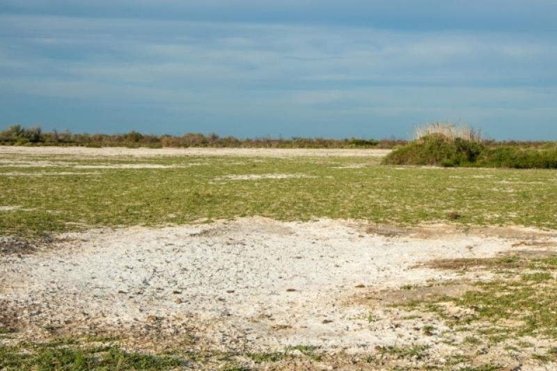 Земли в приграничных территориях РК запретят выдавать