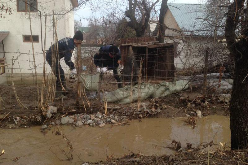 Ситуация с паводками в Алматинской области стабилизировалась - ДЧС