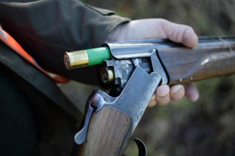 Ограничение свободы получили стрелявшие по инспекторам охотники в Алматинской области