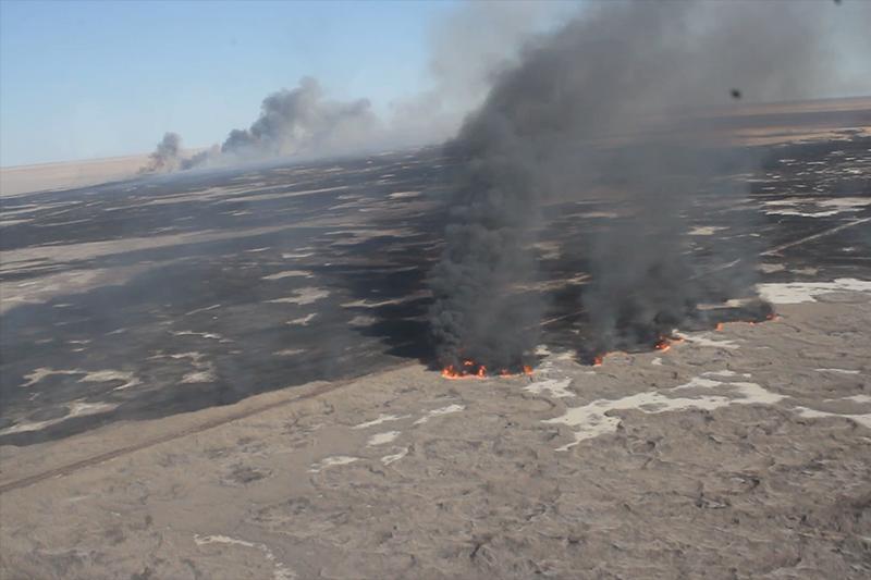 В Атырау площадь пожара в заповеднике «Акжайык» увеличилась до 15 га