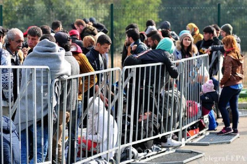 德国将再接纳1万名难民