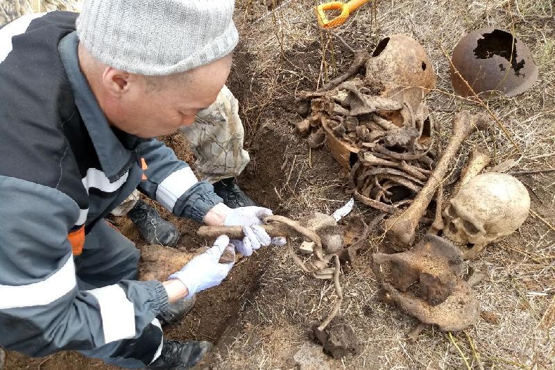 Павлодарские поисковики нашли под Волгоградом останки двух воинов
