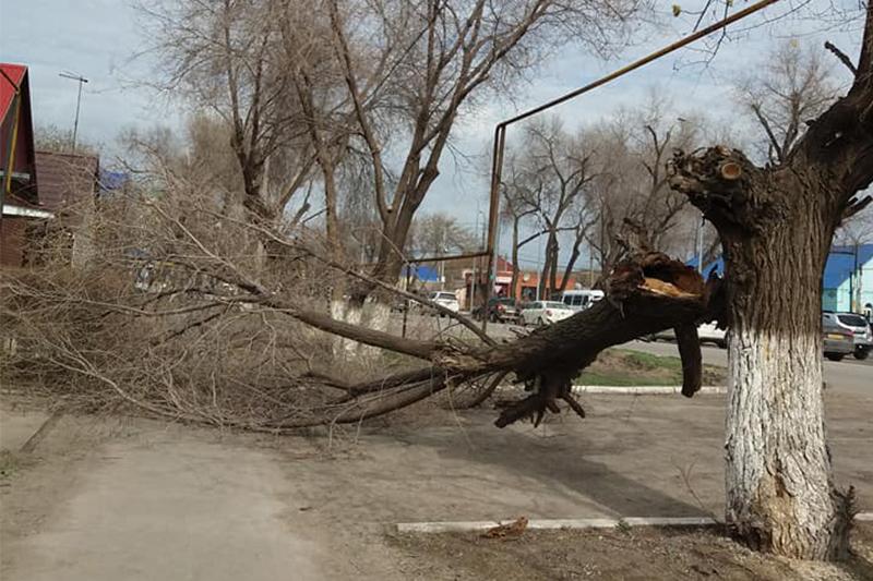 Еще один пострадавший от сильного ветра в ЗКО доставлен в больницу