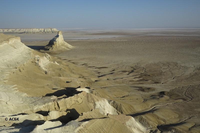 Казахстанско-российская экспедиция подтвердила наличие редчайших животных на Южном Устюрте