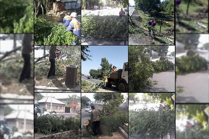 Последствия сильного ветра в Шымкенте устраняют коммунальные службы