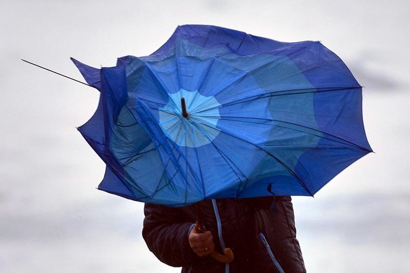 西哈州发布大风天气预警