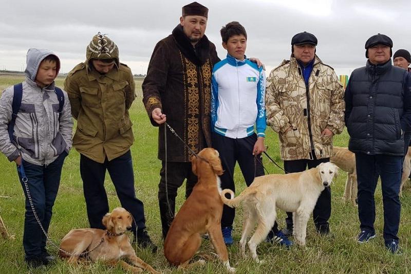 Лучшую породу собак назвали в Карагандинской области