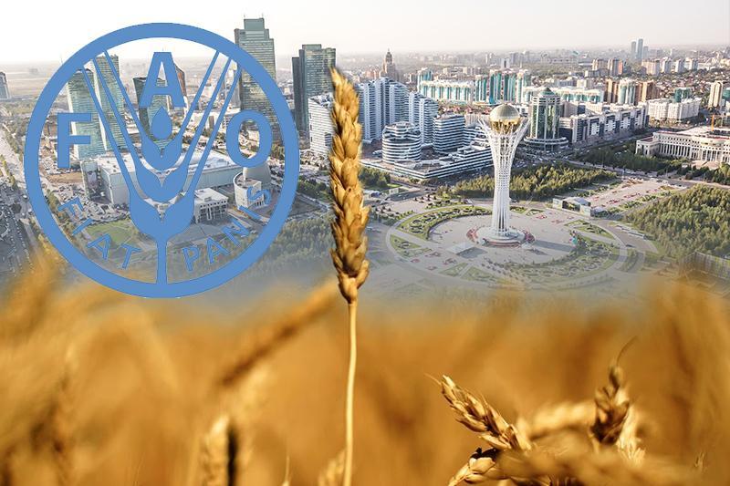 联合国粮农组织将在阿斯塔纳开设代表处