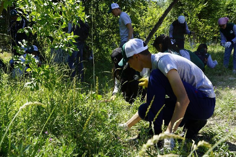 Алматы облысында 1600-ден аса жас маусымдық жұмыста еңбек етті
