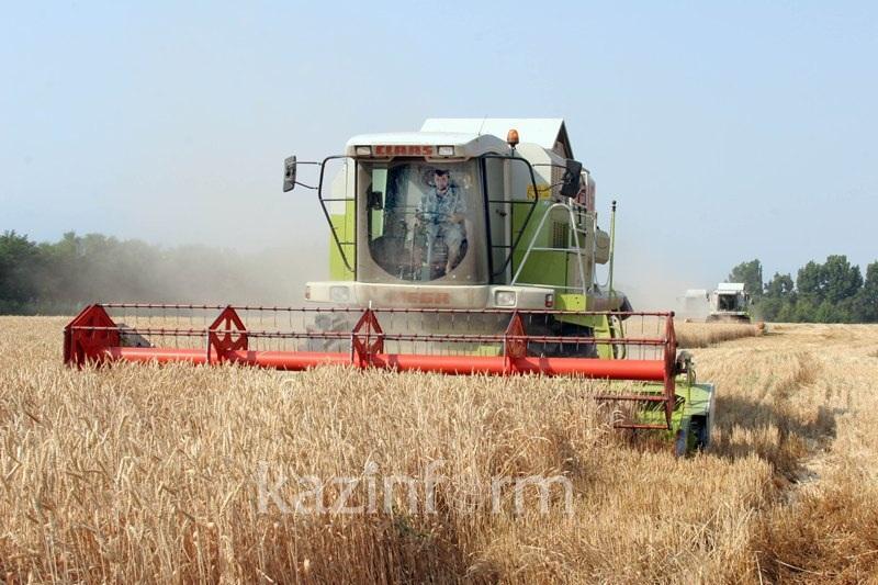 克孜勒奥尔达将扩大农作物出口规模