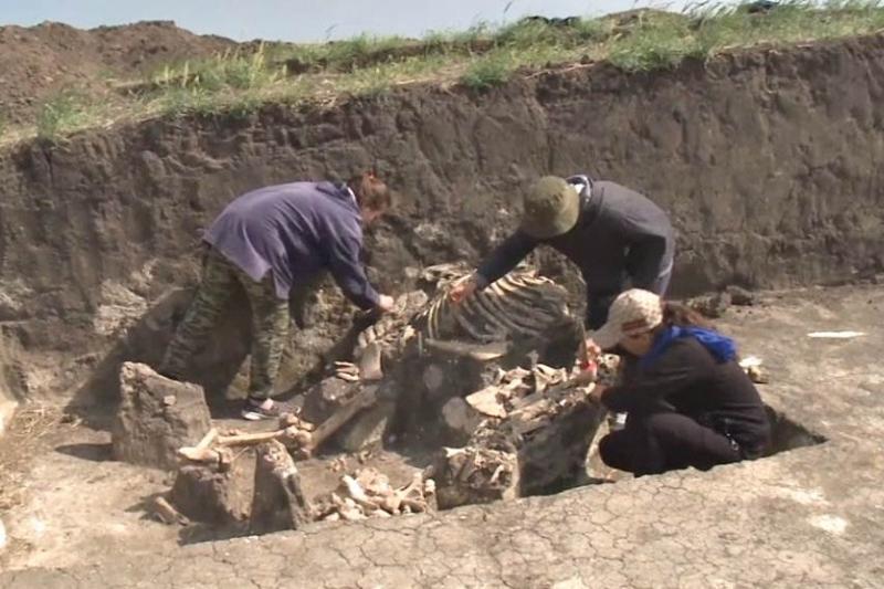 Редкую находку обнаружили археологи недалеко от Актобе
