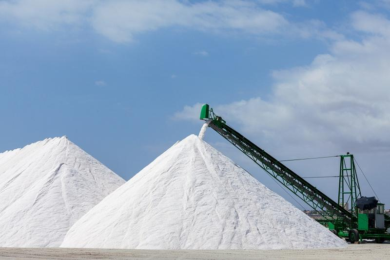 New plant to produce 50,000 tons of salt a year