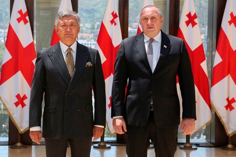 哈萨克斯坦大使向格鲁吉亚总统提交国书