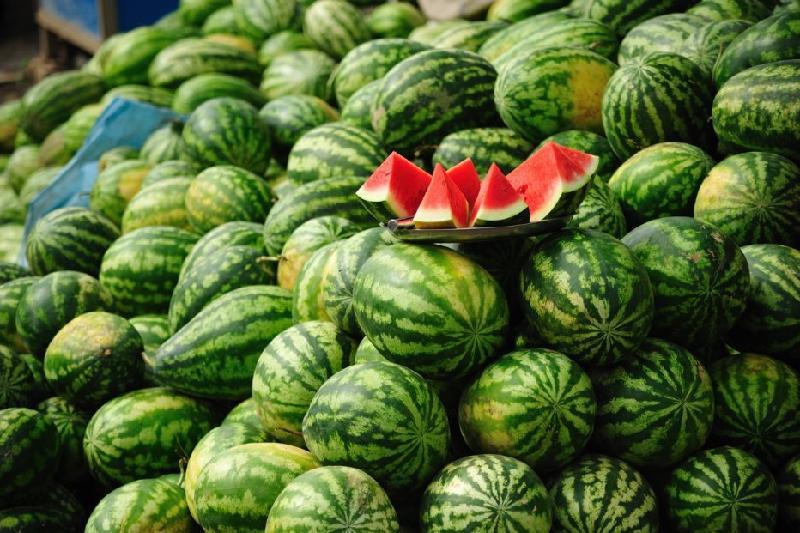 Опасны ли арбузы на рынках Петропавловска