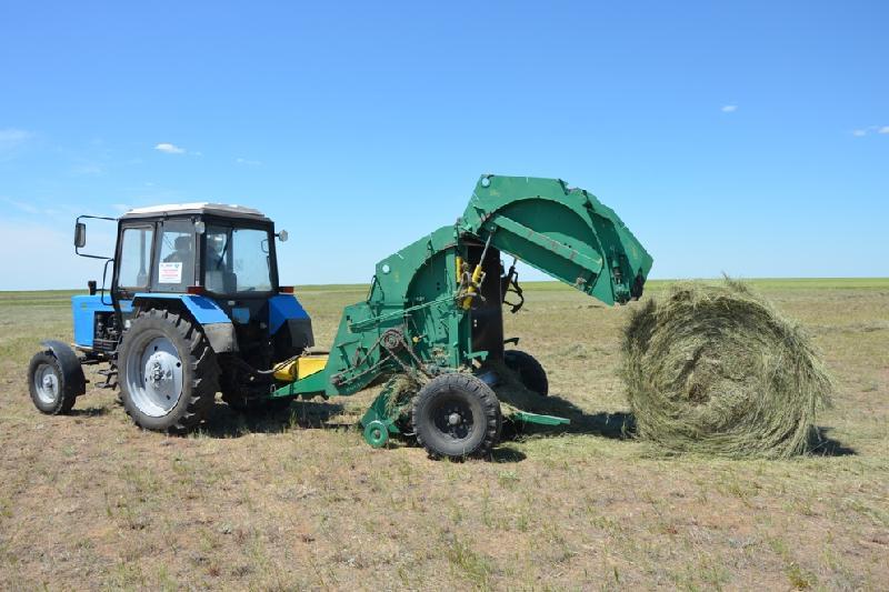 Пройдут ли аграрии Акмолинской области испытание дождем