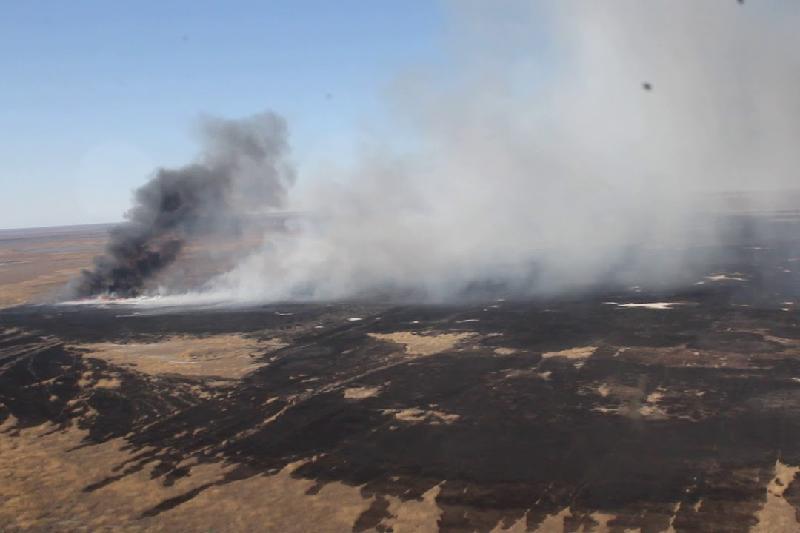 Площадь пожара в заповеднике на Каспии достигла 35 га