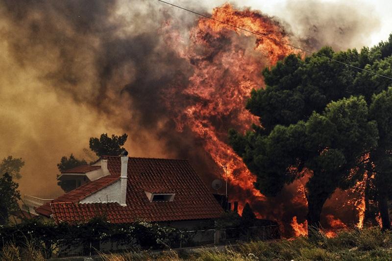 Траур объявили в Греции: более 50 человек погибли в лесных пожарах